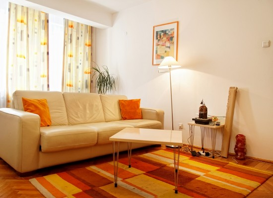 Apartment two bedrooms area Victoriei Bucharest, Romania - AMZEI 2 - Picture 4