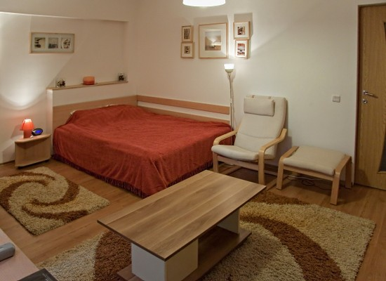 Apartment studio area Baneasa Bucharest, Romania - BANEASA STUDIO - Picture 3