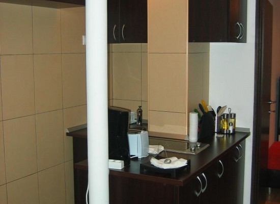 Apartment one bedroom area Dorobanti Bucharest, Romania - DOROBANTI 14 - Picture 3