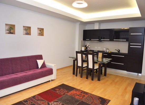 Apartment one bedroom area Aviatiei Bucharest, Romania - HERASTRAU 6 - Picture 4