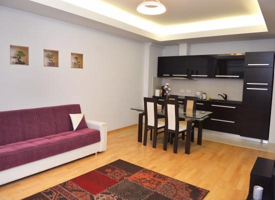 Apartament doua camere zona Aviatiei București, România - HERASTRAU 6 - Imagine 4