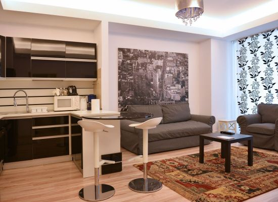 Apartment one bedroom area Aviatiei Bucharest, Romania - HERASTRAU 7 - Picture 2