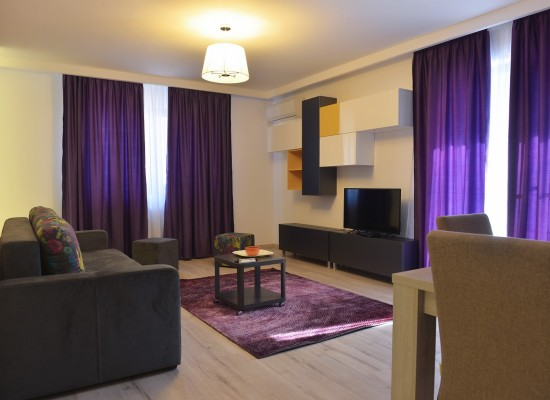 Apartment two bedrooms area Aviatiei Bucharest, Romania - NORDULUI 3 - Picture 4