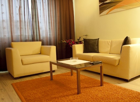 Appartamento monolocale zona Dorobanti Bucarest, Romania - DOROBANTI STUDIO 4 - Immagine 2