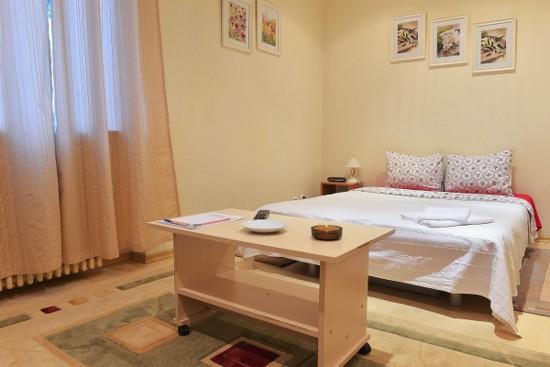 Apartamento estudio área Victoriei Bucarest, Rumania - VICTORIEI STUDIO 2 - Imagen 1